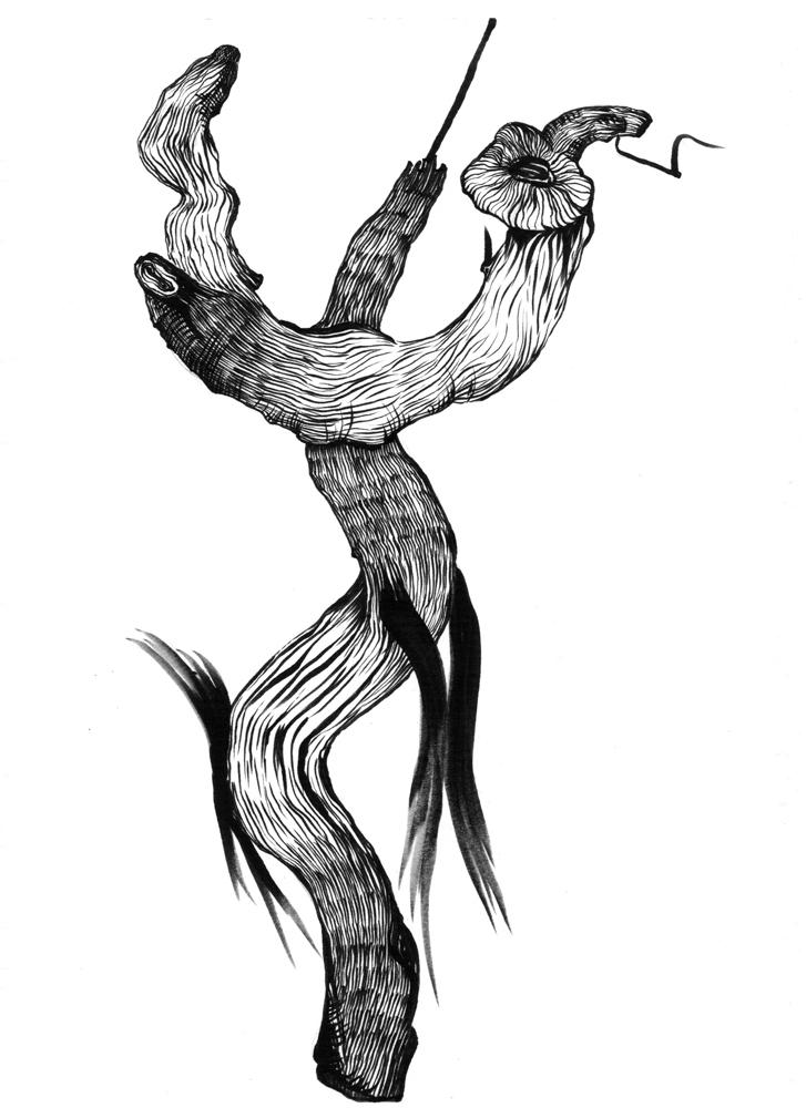 Zeichnung Bestiarium
