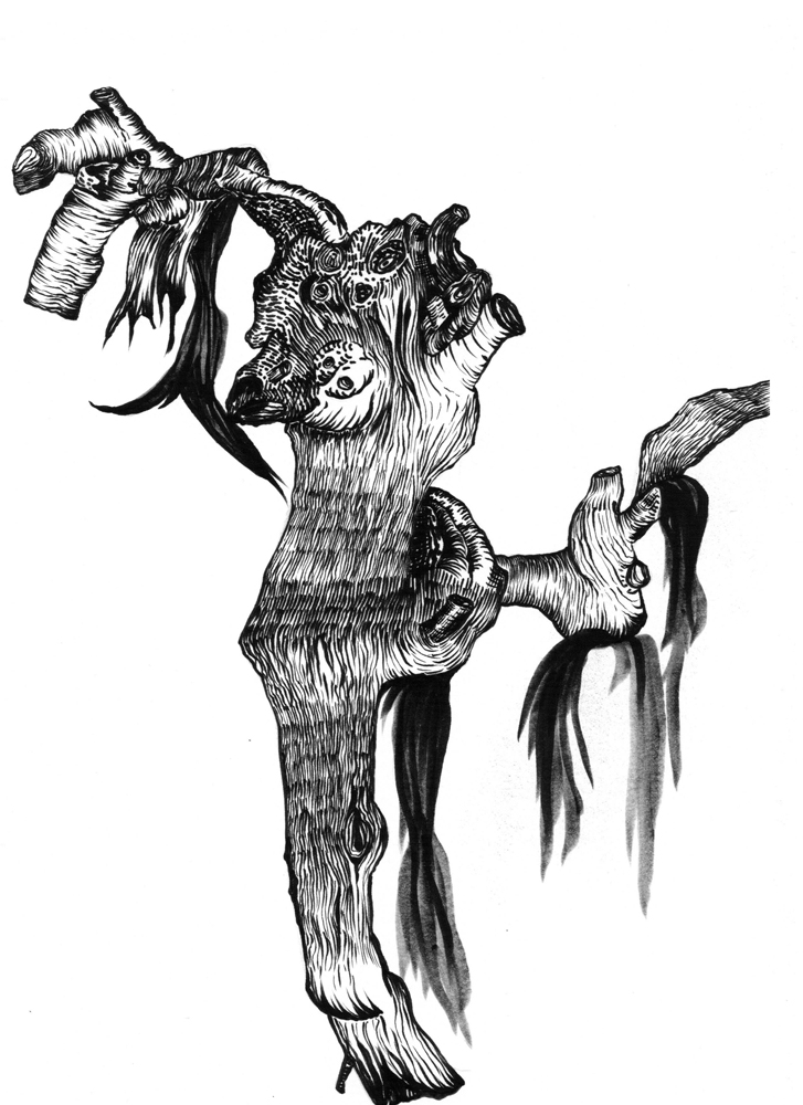 Zeichnung_Bestiarium